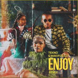 Enjoy by Tekno X Mafikizolo